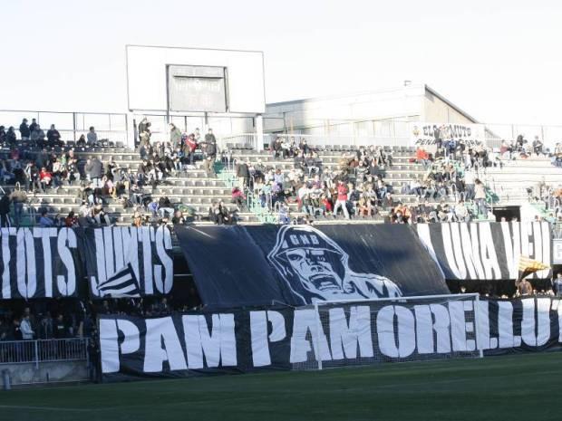 Pampamorellut